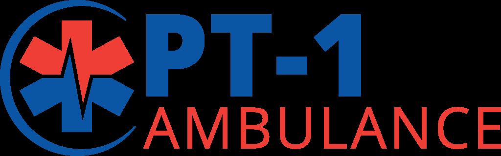 ProTranport-1 Long Logo